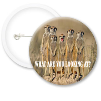 What Are You Looking At Button Badges